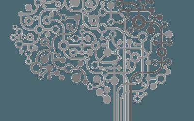 Intelligenza e Sistemica: una bibliografia per il manager